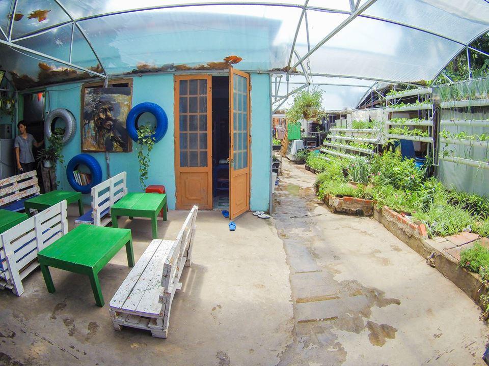 Chụp ảnh tại vườn rau của Vũng Tau Garden City Homestay