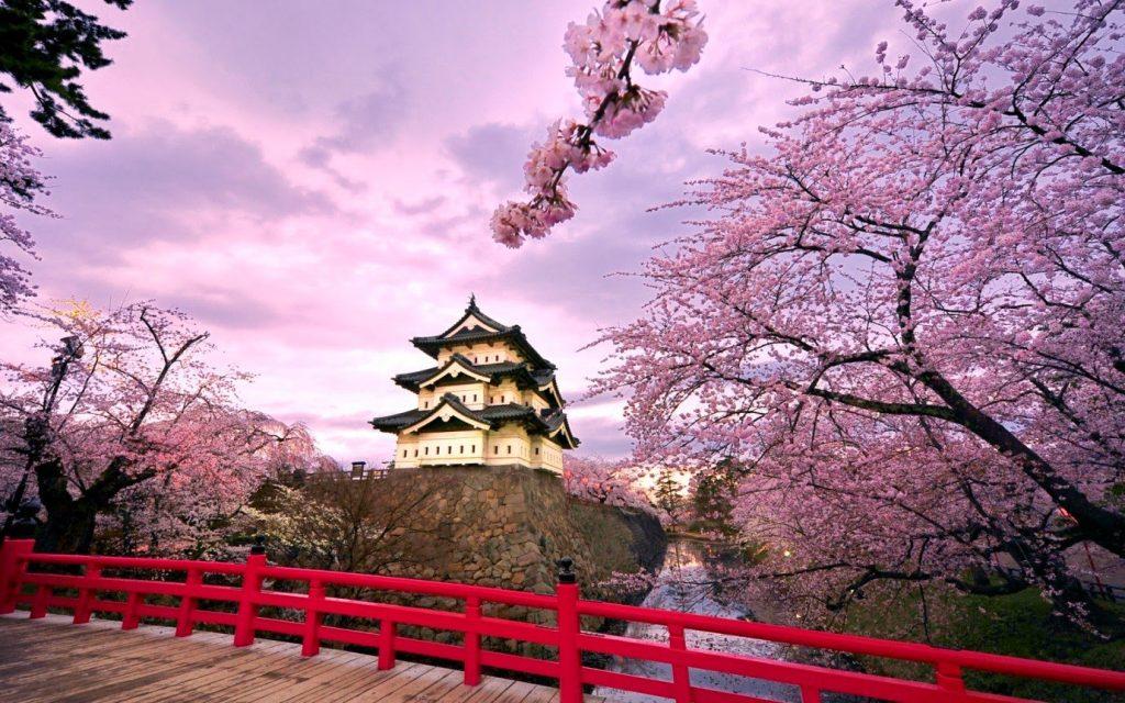 Visa thương mại Nhật Bản là gì